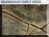 Rain-Forest-Green.jpg
